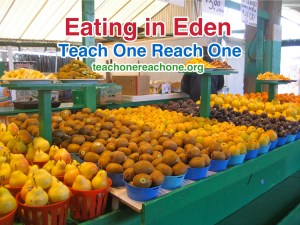 Eating in Eden – Teach One Reach One