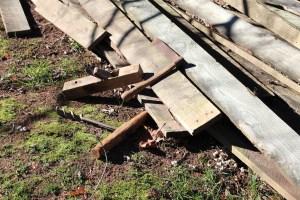Let's Build an Ark –Teach One Reach One