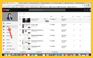 Screenshot of YouTube Studio and indicating where to click to access videos.