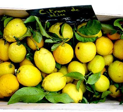 citron-de-Nice