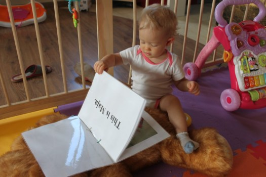 Baby's first books