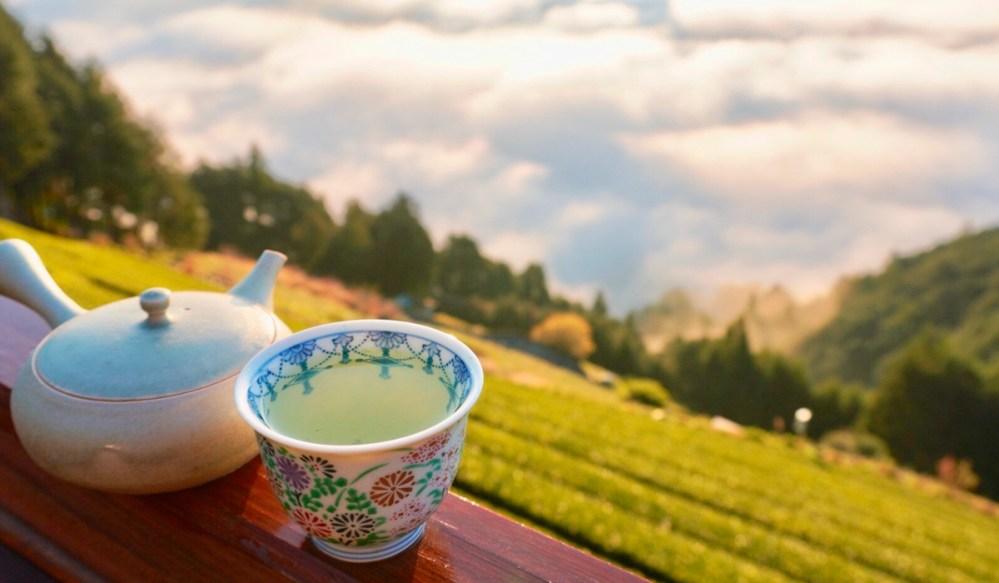 Japanese Tea Documentary Gochisochaji ごちそう茶事 (5)