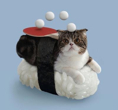 SushiCat2