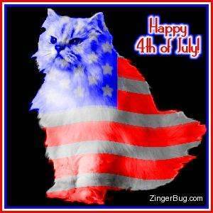july_4_flag_cat