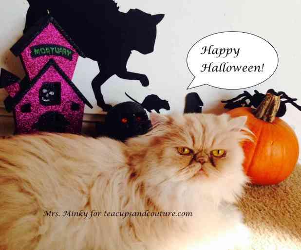 minky halloween