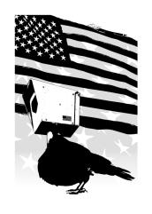 CCTV Crow U.S