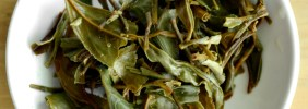 Glendale Tea Estate Spring Twirl Infusion