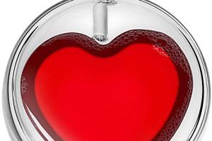 Double Walled Valentines Cup