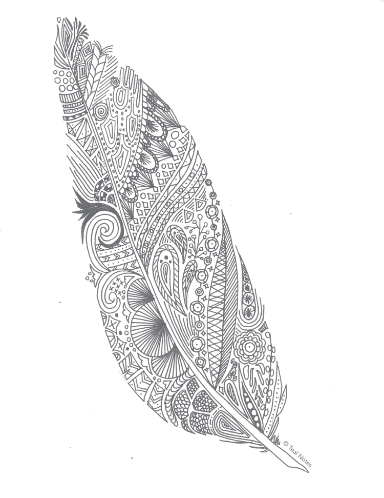 free adult coloring pages, printable feather coloring page