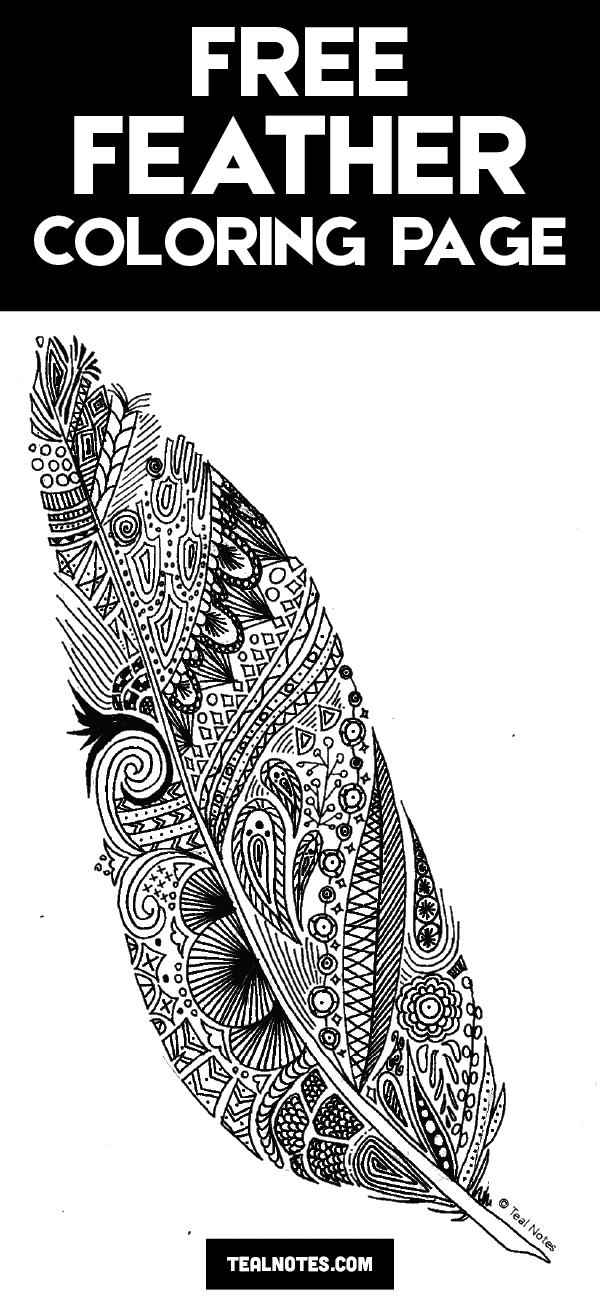 free feather coloring page