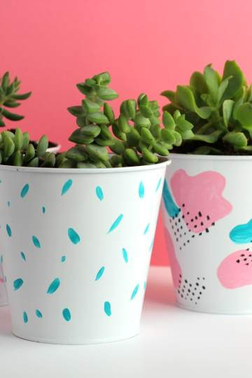 DIY Succulent planter painted