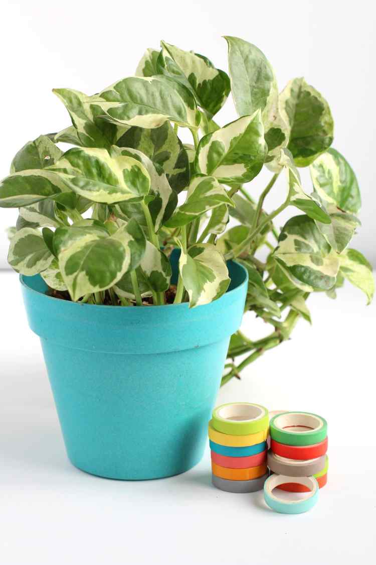 washi tape flower pot