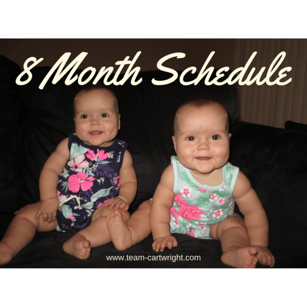 Eight month update and schedule