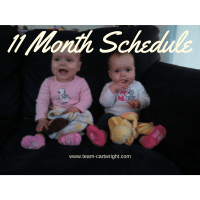 11 Months Old Twin Schedule