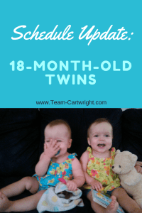 How to schedule an 18 month old. 18 month old twin schedule and routine.