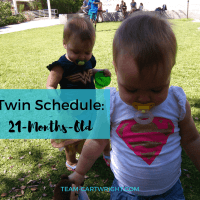 21 Months Old Twin Schedule