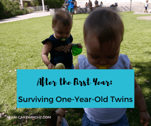 Twin one-year-olds playing in a field. Surviving the first year: life with one-year-old twins. #toddler #twins #mom