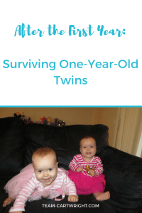 After the First Year: Surviving One-Year-Old Twins #twins #toddler #parenting