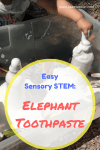 Looking for a fun sensory STEM project to really wow your kids? Try elephant toothpaste. Easy, fun, and safe to play with. This sensory eruption will impress your children and grab their attention. Plus they will love digging their hands into the foam! STEM with kids   Preschool Learning Activity   Easy Science Projects #STEM #science #easy #safe #preschool #toddler #learningactivity #scienceproject Team-Cartwright.com