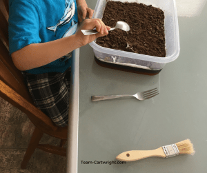 Sensory STEM fun with a tasty archaeological dig. Use Jell-O to create a science project your kids can eat! #STEMactivity #scienceathome #toddlerlearning #preschoollearning #homeschool #birthdaypartyactivity #kidcraft
