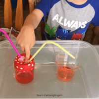 Easy Heart Pump Model: Cardiovascular STEM for Kids