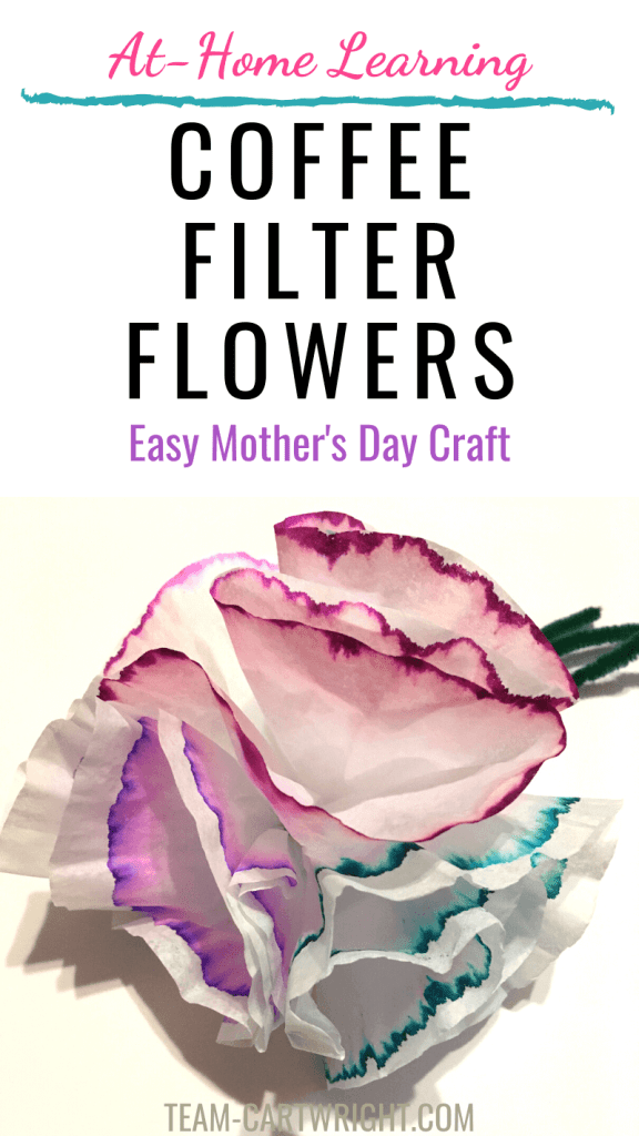 Coffee Filter Flowers Easy Mother's Day Craft with picture of coffee filter flowers on green pipe cleaner stems