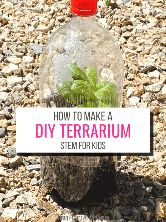 Text: How To Make a DIY Terrarium Garden for Kids Picture: Soda bottle terrarium with plant inside