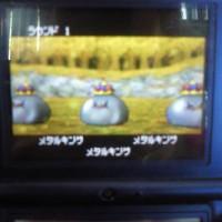 201005011516000.jpg