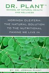 Moringa Oleifera: The Natural Solution to the Nutritional Famine We Live In