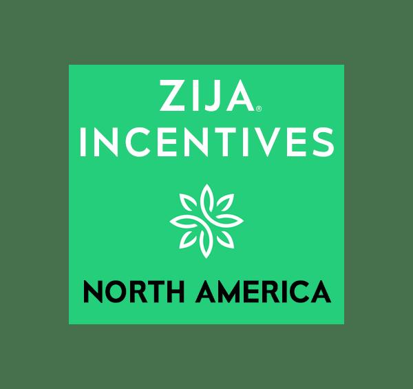 incentives-north-america