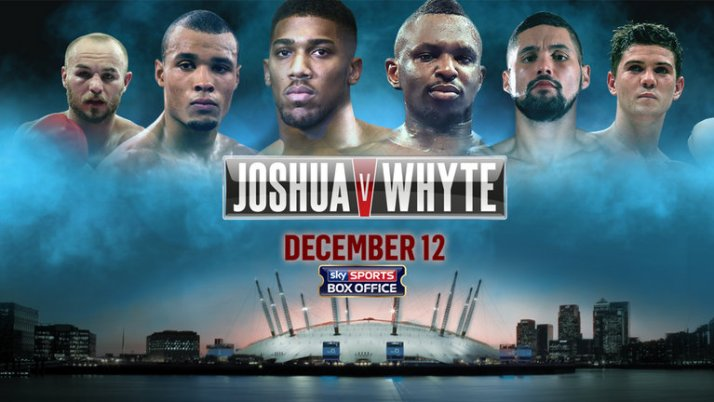 joshua-whyte-box-office-boxing-fight_3383586