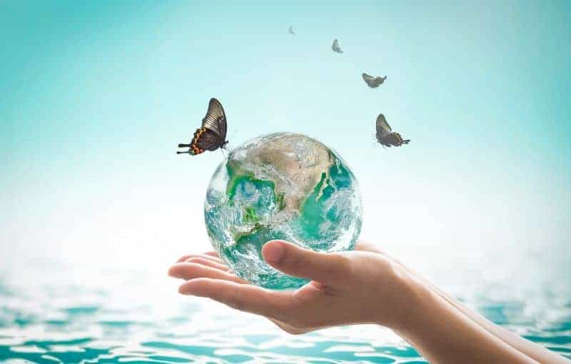 …composez votre propre écosystème