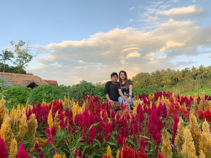 batis aramin quezon province garden pics