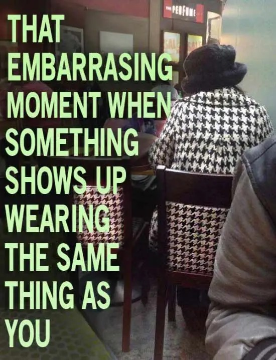 33 Funny Pics of Random Offbeat Weirdness ~ that embarrassing moment when... chair pattern matches woman's coat