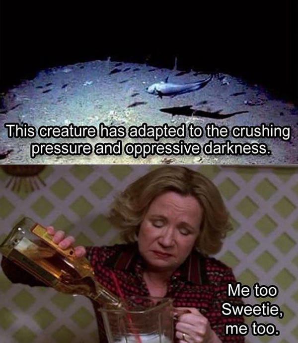 Funny Drinking Meme ~ Adapted to crushing pressure and oppressive darkness, me, too sweetie
