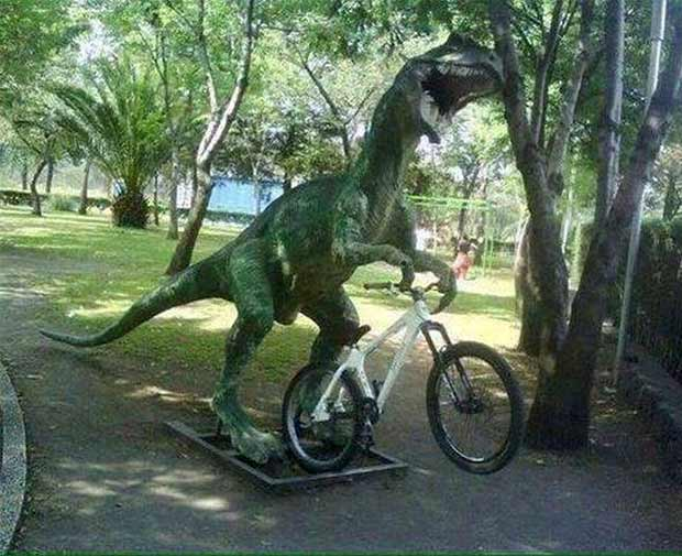 Funny Raptor rising bike in park