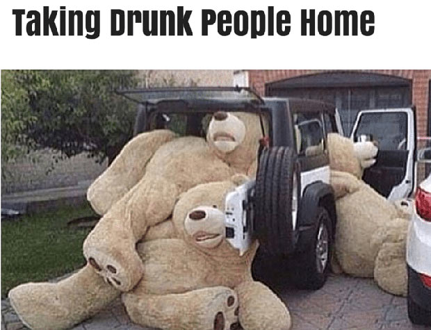 Giant teddy bears falling out of car, taking drunk people home ~ 35 Funny Pics & Memes