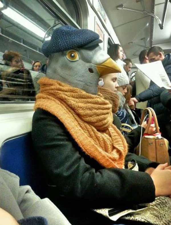 Why I don't ride public transportation... man in pigeon head mask on bus ~ 35 Funny Pics & Memes