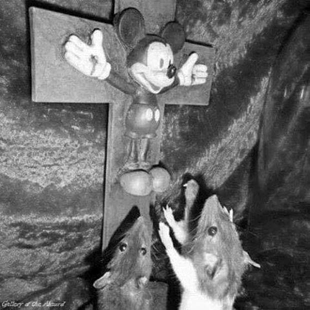 Oh, Mickey! ~~ funny pics & memes ~~ mickey mouse on cross, crucified, rats