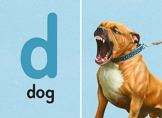 How to learn the alphabet... d is for dog... ~Funny Pics Memes