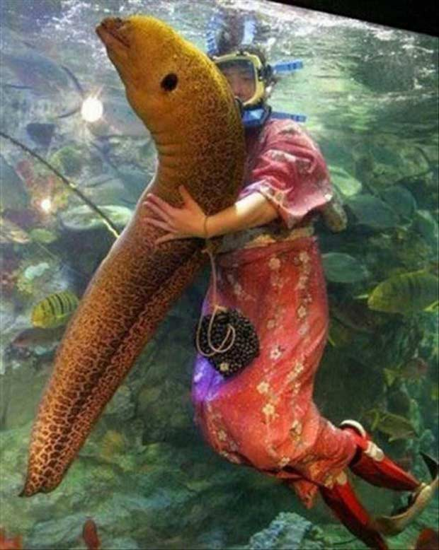 What the...??? ~ Japanese woman in kimono in aquarium hugging giant eel
