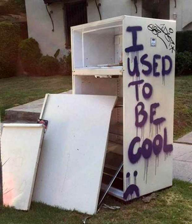 It sucks getting old... Abandoned used refrigerator, I used to be cool