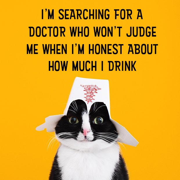 Random Humor : 35 Funny Pics and Memes ~ cate memes searching for doctor who won't judge me about how much I drink, inspirational honesty