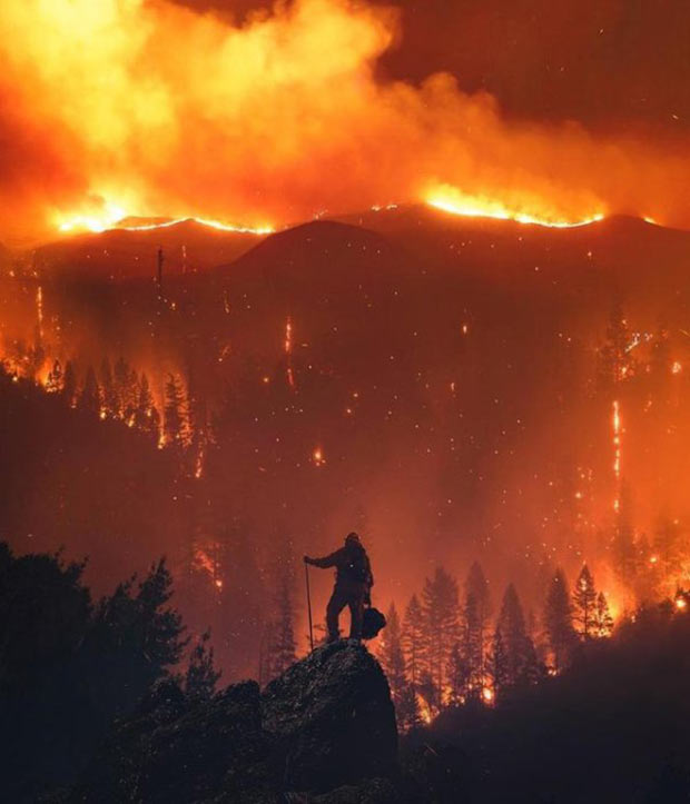 35 Funny Memes and Pics of Humor Galore ~ fireman on mountain top California wildfires