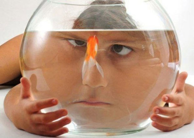 35 Funny Memes and Random Pics to Boost Your Humor Level... distorted face in fishbowl