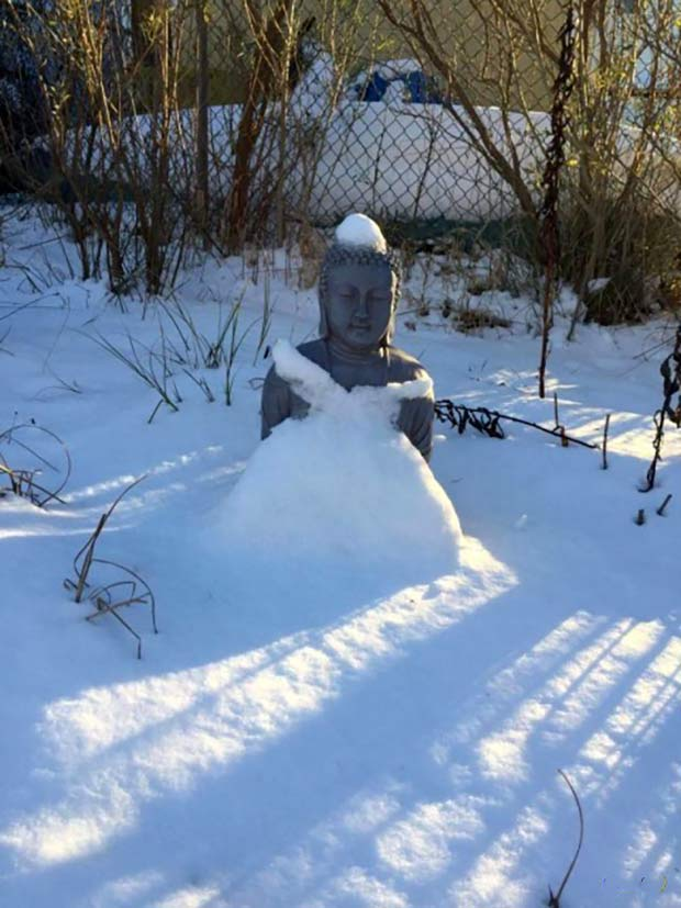 33 Funniest Memes and Pic to Get Your Laugh On ~ buddha statue snow dress
