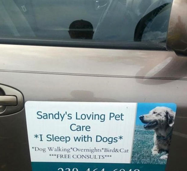 35 Funny Memes and Random Pics to Fuel Your Humor ~ sign fail context sandy's loving pet care I sleep with dogs