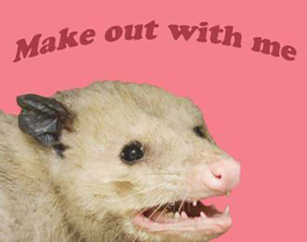 35 Funny Memes and Random Pics to Fuel Your Humor ~ opossum make out with me kiss
