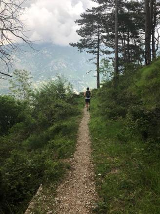 mark running on trail kotor