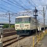 【JRの首都圏で唯一のライナー列車】都心と湘南地区を結ぶライナーの詳細と今後(2021.2.7更新)